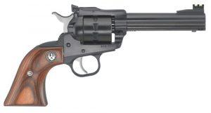 Ruger Single Ten 22 LR