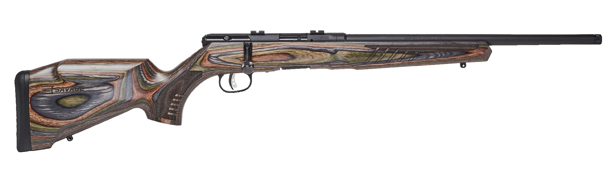 Savage Arms B17 BNS-SR 17 HMR