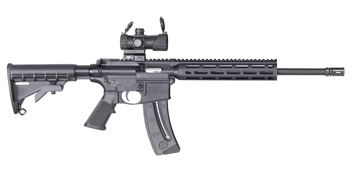 Smith and Wesson M&P15-22 Sport OR 22 LR