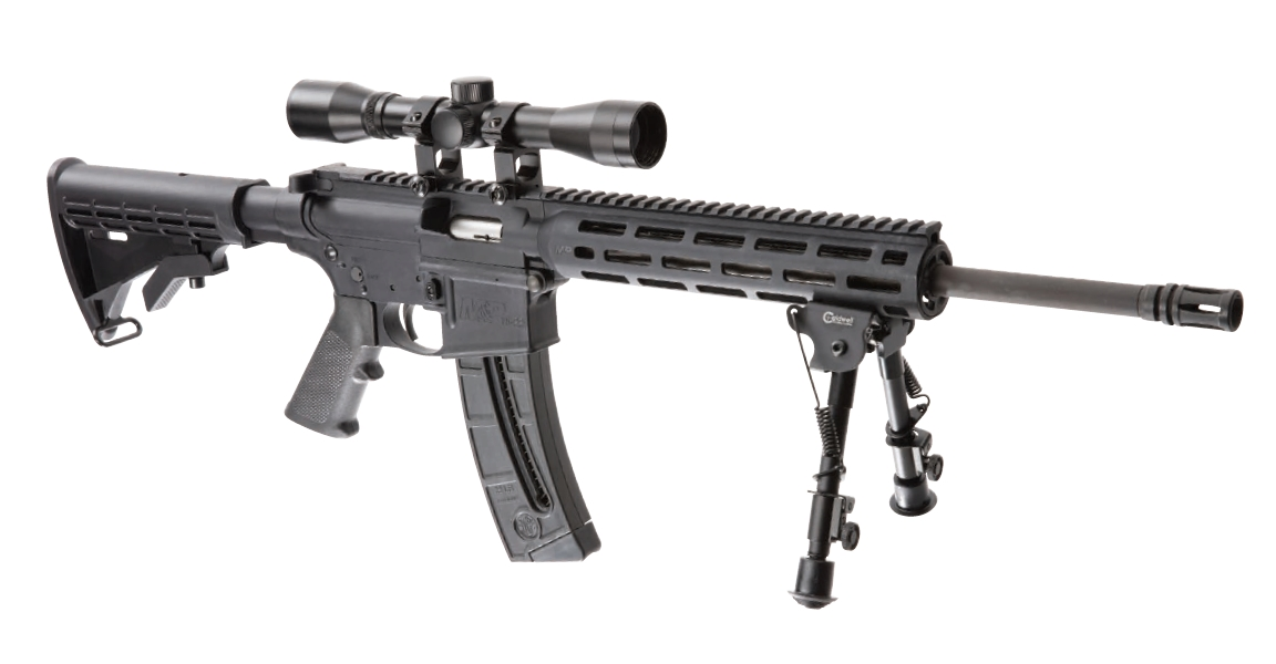 Smith and Wesson M&P15-22 Sport OR Promo Kit 22 LR